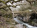 Footbridge over the College Burn, east of Hethpool Linn - geograph.org.uk - 1739629.jpg