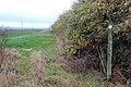 Footpath marker north of Harbury - geograph.org.uk - 1569990.jpg