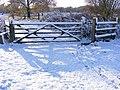 Footpath to Bungay - geograph.org.uk - 2667417.jpg