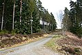 Forest Crossroads - geograph.org.uk - 768671.jpg