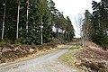 Forest Crossroads - geograph.org.uk - 768671.jpg