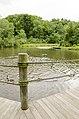 Forest Park, Springfield, MA 01108, USA - panoramio (23).jpg
