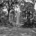 Fountain and Foliage.jpg