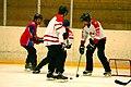 Four-Nation Hockey Tournament 12 (4397902618).jpg