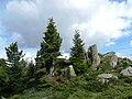 Fra Sadole e Cavelonte (culmine dei due versanti) - panoramio.jpg