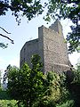 France Spesbourg castle keep.jpg
