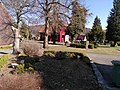Friedhof Sankt Andreasberg.jpg