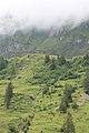 From Klöntal to Schwyz via Muotathal - panoramio (23).jpg