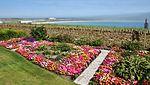 Front garden IMG 1310 (14541388139).jpg