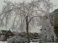 Frozen canada - panoramio.jpg