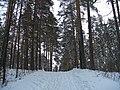 G. Miass, Chelyabinskaya oblast', Russia - panoramio (1).jpg