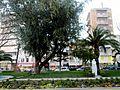 Gardens Nicosia City Hall Cyprus 3.jpg