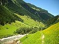 Gemeinde Mayrhofen, Austria - panoramio (1).jpg