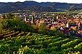 Gengenbach und der Wein. 03.jpg