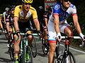 Giro d'Italia - 3ª tappa Rapallo-Sestri Levante - Passaggio a Barbagelata (GE) (17340424588).jpg