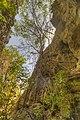 Goa Batu Cermin - Indonesia 2.jpg