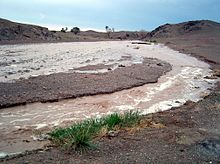 muddy stream in Gobi desert with grass in foreground and desert in background