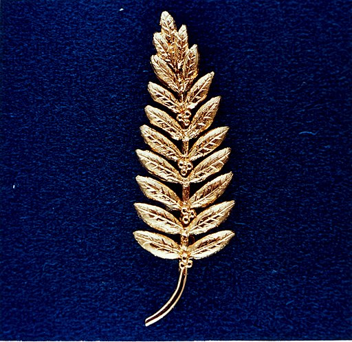Gold Olive Branch Left on the Moon by Neil Armstrong - GPN-2002-000070