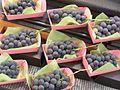 Grapes (42799229).jpg
