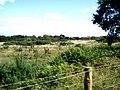Gravel Pit viewed from Bembridge Trail - geograph.org.uk - 1453680.jpg