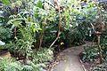 Greenhouse @ Parc Floral @ Paris (29861428160).jpg