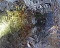 Grotte de la Vache P1010038mod.jpg