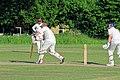 Hatfield Heath CC v. Netteswell CC on Hatfield Heath village green, Essex, England 58.jpg