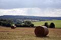 Hay bales (1444245716).jpg