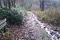 Heathland Trail near Decoy Cottage - geograph.org.uk - 1610300.jpg