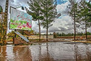 Sirjan - Image: Heavy rain in sirjan, Iran