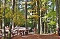 Hellerhütte im Naturpark und Biosphärenreservat Pfälzerwald - panoramio (2).jpg