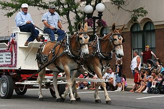 Macomb, Illinois - Heritage Days Parade, 2005