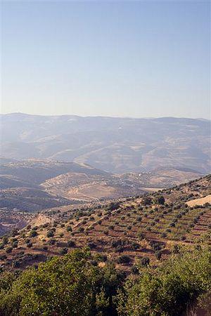 Gilead - The hills of Gilead (current day Jalʻād), Jordan