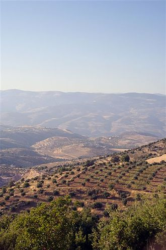 Gilead - The hills of Gilead (current day Jalʻād), Jordan