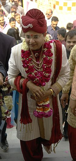 definition of groom