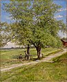 Hjalmar Munsterhjelm - Crack Willows - A I 618 - Finnish National Gallery.jpg