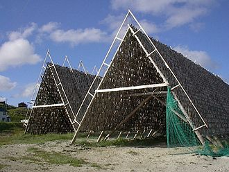 Dried fish - A fish flake, such as this one in Norway, is a rack used for drying cod