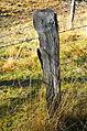 Hochrindl Messaneggeralm Stacheldrahtzaun Pfahl 25102013 090.jpg