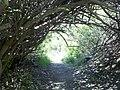 Holly Jim Trail - panoramio (3).jpg