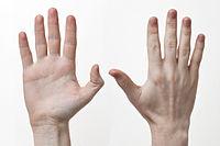 Hand/