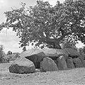 Hunebed bij Rolde, Bestanddeelnr 254-5165.jpg
