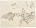 Hypoderma peronii - 1700-1880 - Print - Iconographia Zoologica - Special Collections University of Amsterdam - UBA01 IZ20700051.tif