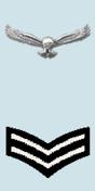Parche de rango en el hombro del cabo de la Fuerza Aérea India