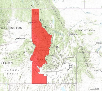 Idaho's 1st congressional district - since January 3, 2013.