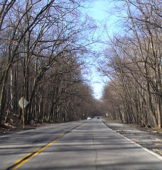 Illinois Route 171 - Scenic section of IL 171 in the Palos Forest Preserve