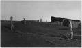 In the dust storm area of the Southwest, valuable topsoil has been blown away by the winds from the fields into... - NARA - 196416.tif