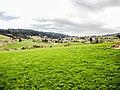 Indevillers, vu de la route de Chauvilliers. (2).jpg