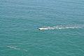 Indian Ocean 10.jpg