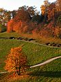 Indian Summer am Hungerberg - panoramio.jpg