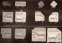 IndusValleySeals.JPG